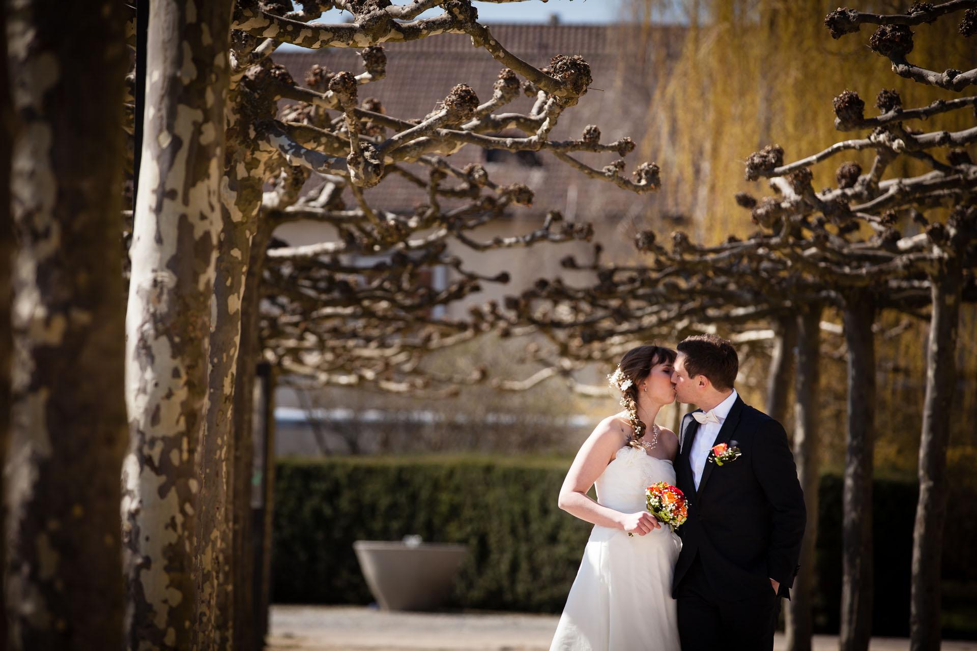 BRautpaar küsst sich im Stadtpark Böblingen zwischen Baumallee